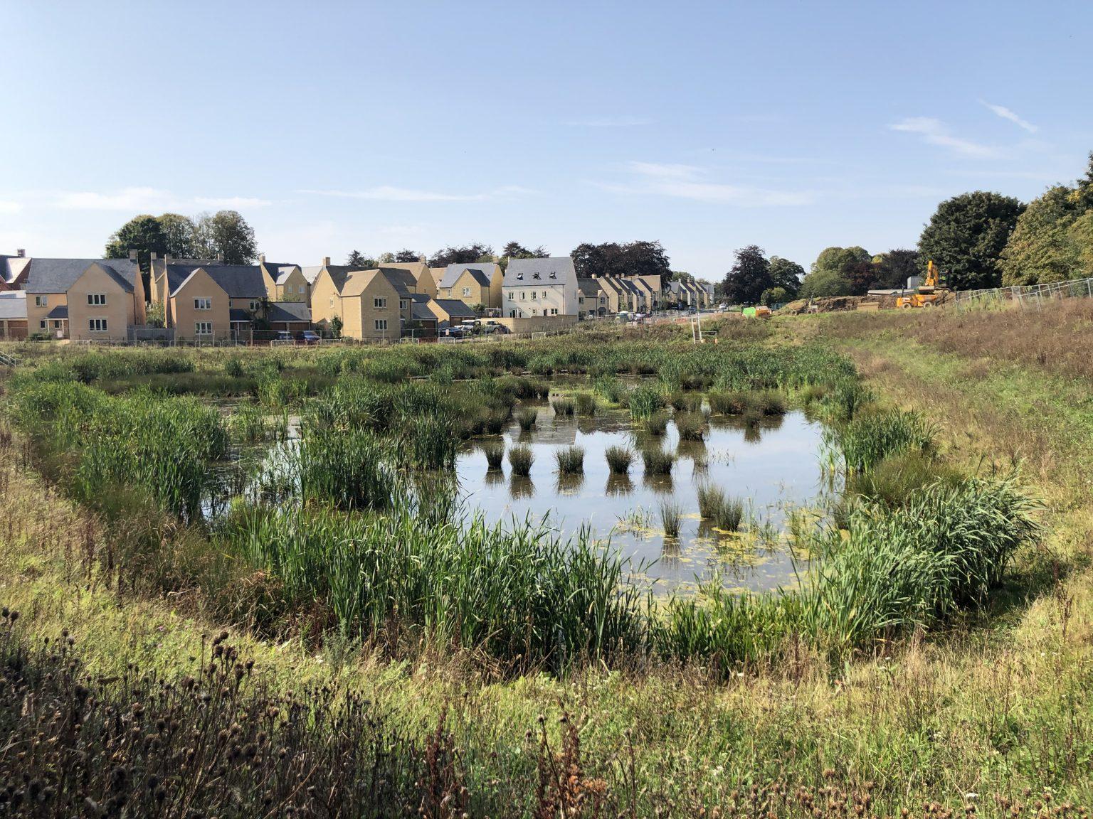 pond recent months